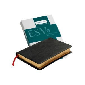 Cambridge ESV Pitt Minion Reference Black Goatskin