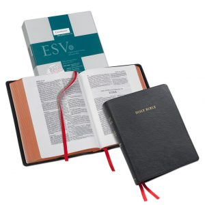 Cambridge ESV Wide-Margin Reference Black Goatskin