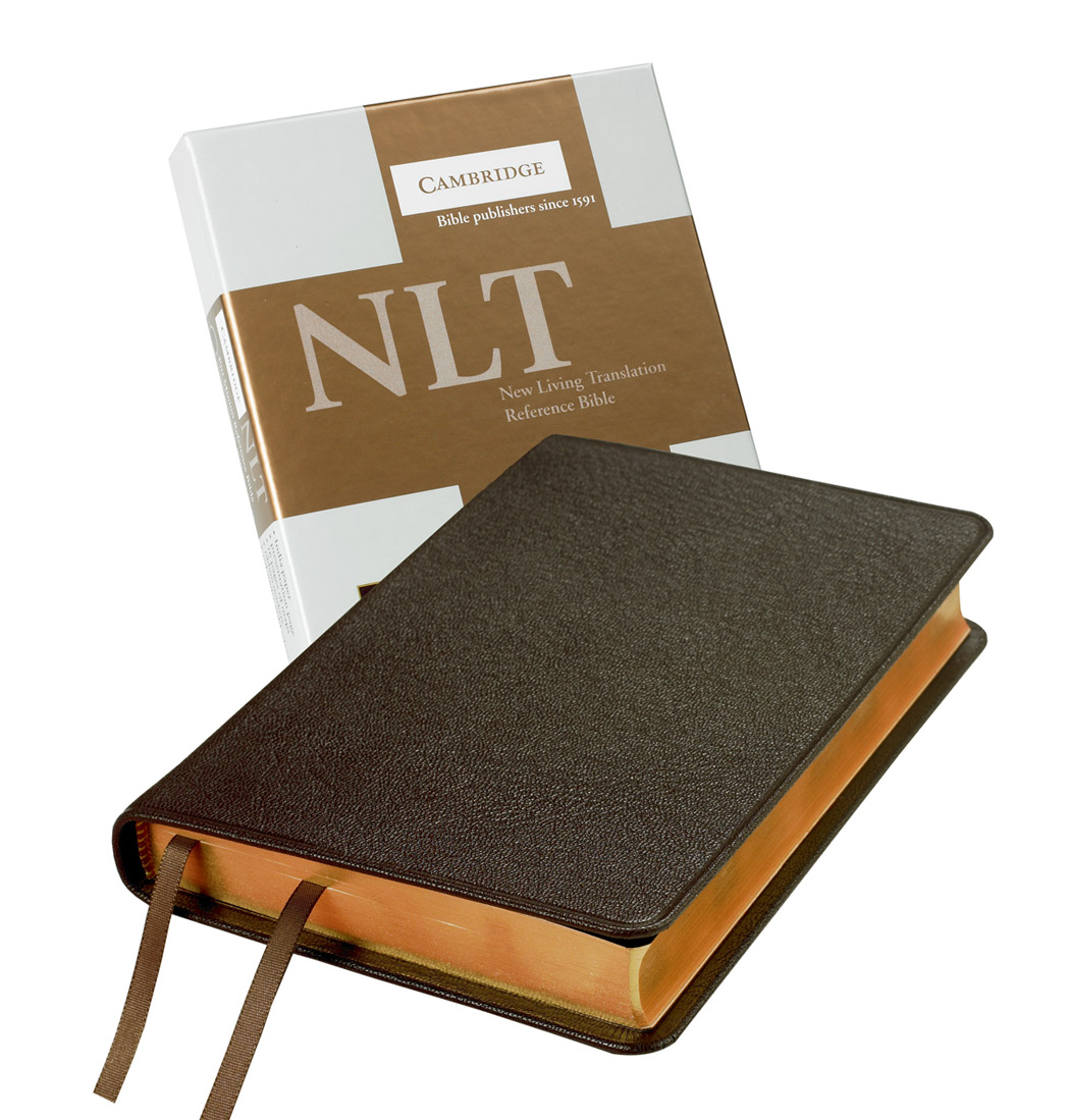 nature and biblical reference in annie This dictionary is a reference work with 4,000 biblical entries of encyclopedic nature 3) hitchcock's names: this dictionary lists the meanings of the hebrew names that appear in the bible (over 2,500).
