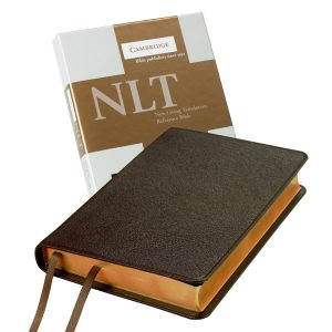 NLT Pitt Minion Reference Brown Goatskin