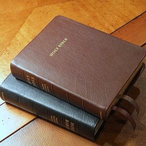 ESV Clarion Reference Bible Brown Calfskin Leather