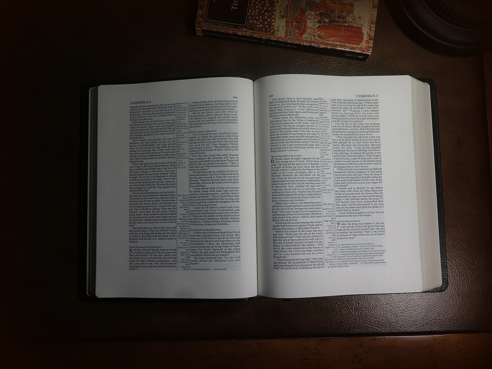 Type of study bibles