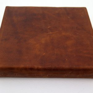 ESV Double Column Journaling Bible (Natural Leather, Brown)