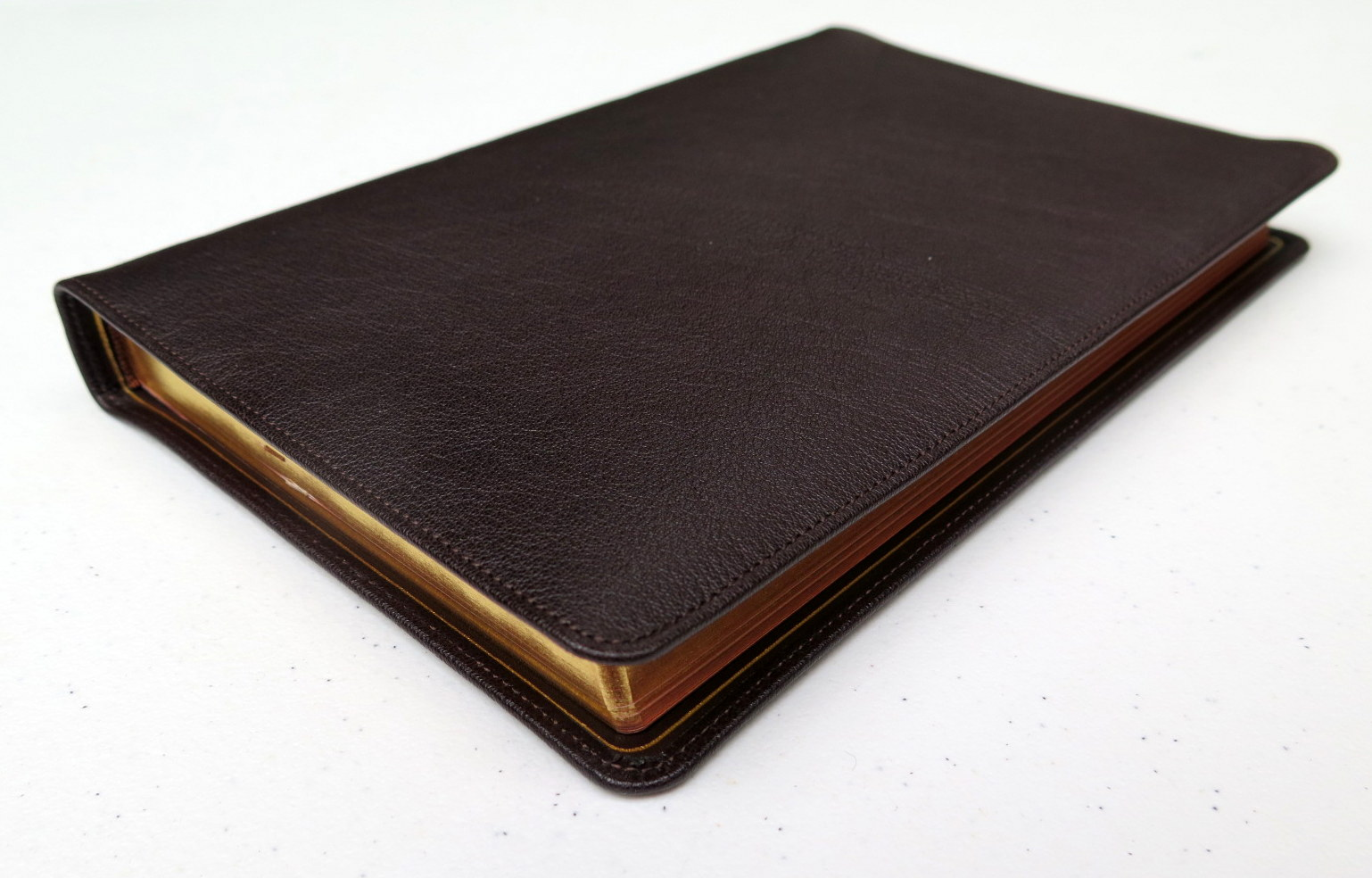 ESV Omega Thinline Reference Bible (2013, Leather)